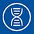 Science: Neues Gen führt beim Menschen zu Haarlosigkeit
